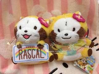 夏威夷版 浣熊 小浣熊 Rascal Hawaii 公仔