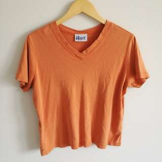 Orange V-Neck Top