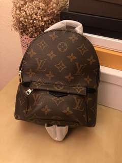 Louis Vuitton mini back pack