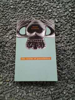 The Realm of Possibility by David Levithan (shipping fee included)