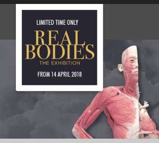 2x Real Bodies exhibition