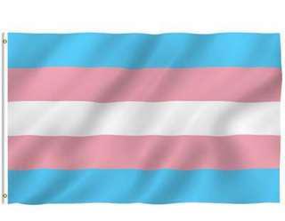Transgender flag INSTOCKS