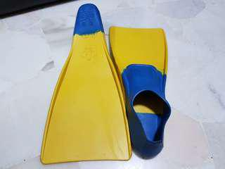 swimming fins / flippers