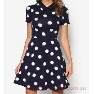 🚚 Dorothy Perkins Navy Spot Collar Dress