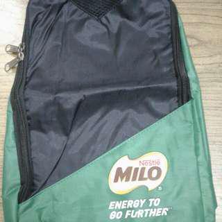 Shoes bag/travel bag/sport bag