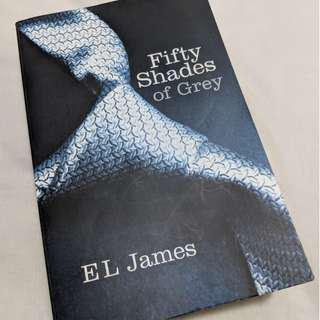 50 shades of grey (the 1st book)