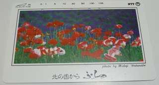 🚚 【日本電話卡】北海道薰衣草故鄉-富良野-2(已使用)