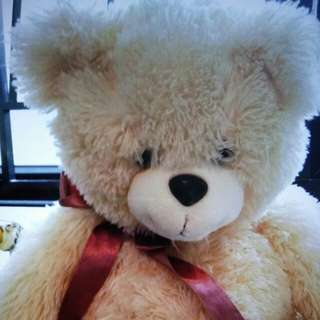 大可愛小熊
