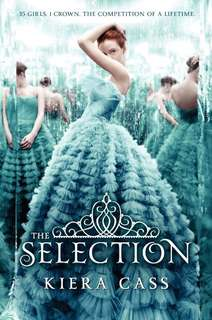 The Selection (EBOOK)