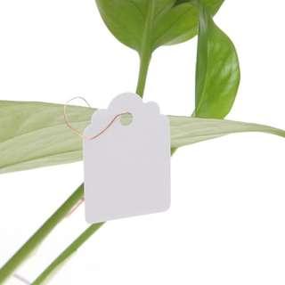 🚚 Label: PVC Hanging Plant Tag Labellers (10/20/30 pcs bundle)