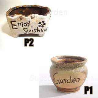Rustic Mini Pots For Succulents and Cactus - Stock Clearance Sales