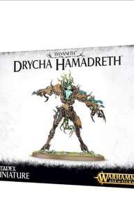 Warhammer Age of Sigmar Drycha