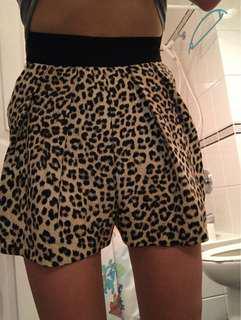 Zara leopard shorts