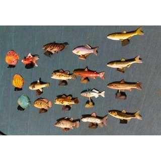 魚 18條
