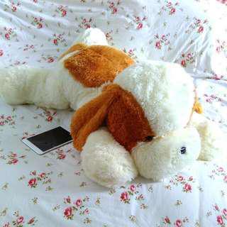 Big Fluffy Dog