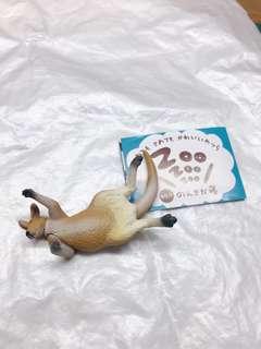 🚚 扭蛋_zoo睡覺系列-袋鼠