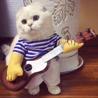 寵物衣服 貓 狗 衫 吉仔手 寵物衫 裝扮 搞怪 可愛 造型
