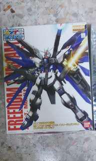 MG Strike Gundam Clear Expo Ver