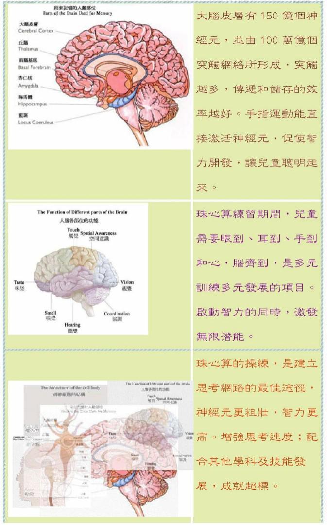 健腦珠心算課程(送平板)私人或單對單