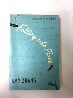 Novel ; Falling Into Place by Amy Zhang