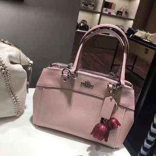 Coach Bag 中size