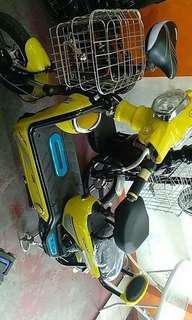 E-bike Mini eagle