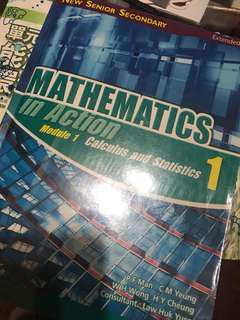 mathematics in action modue 1