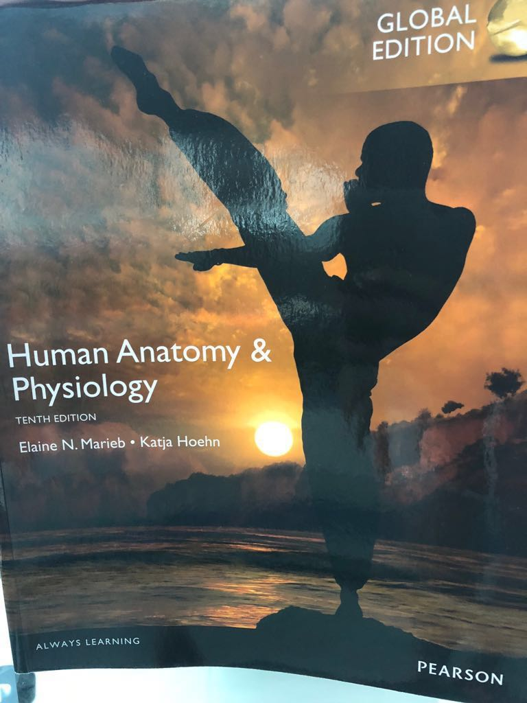 Human Anatomy and Physiology TB, Books & Stationery, Textbooks ...