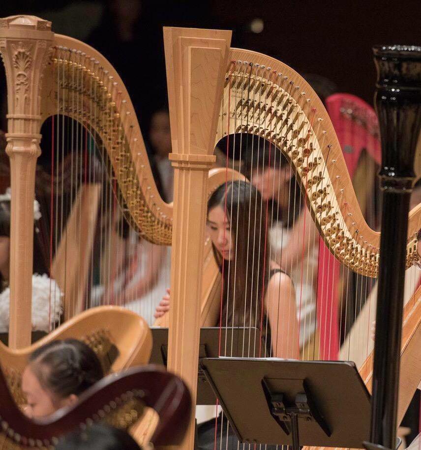 豎琴演奏級老師LTCL, major in Harp, 婚禮表演音樂,music wedding planner live band