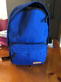 Fossil 16' backpack