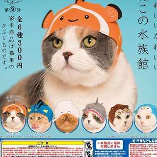 奇譚魚 貓帽 藍魚