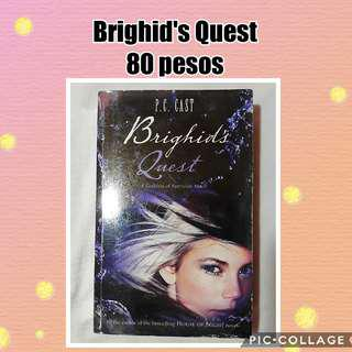 YA BOOK  BRIGHID'S QUEST