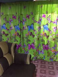 BUTTERFLY 🦋 CURTAIN