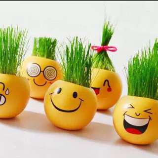 Cute Emoji Flower Pot Teachers Day Gift