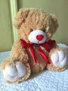 Blue Magic Teddy Bear