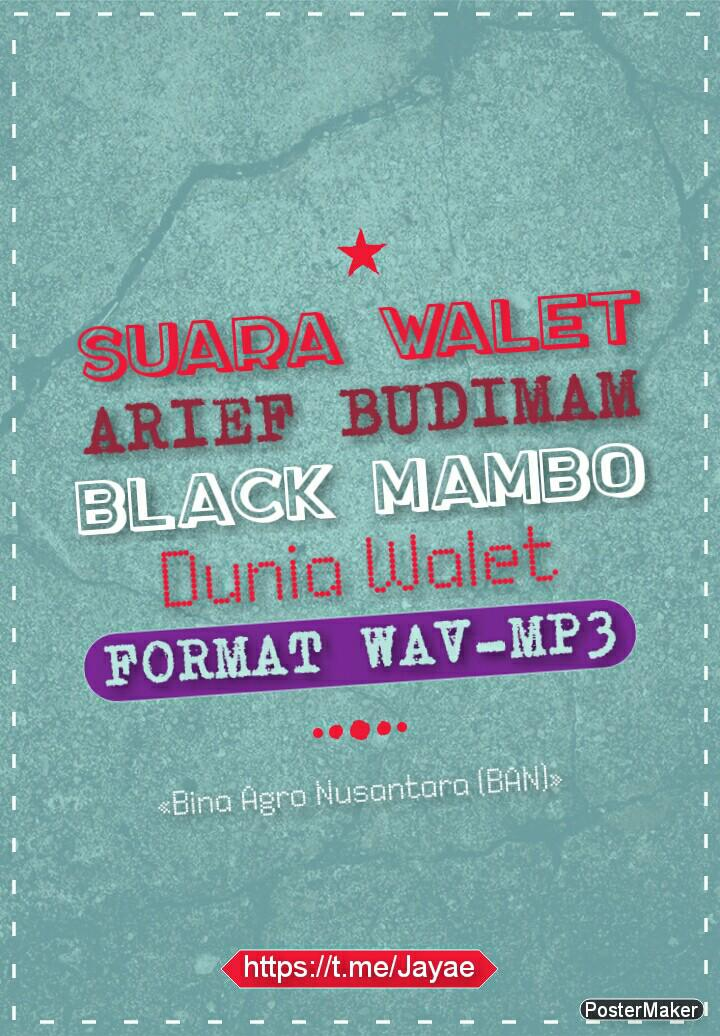 Suara Panggil Burung Walet Terbaik Black Mambo Ban Musik Media Cd Dvd Lainnya Di Carousell