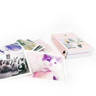🚚 貓咪明信片組 貓咪 照片 明信片 收藏 紀念 可愛 粉色