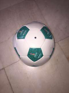 FIFA Official Sponsor Football