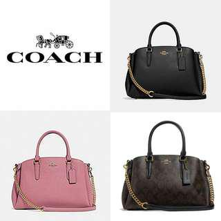 COACH SAGE CARRYALL IN SIGNATURE CANVAS  (F29434)