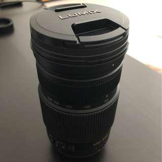 Lumix 100-300mm M4/3 lense