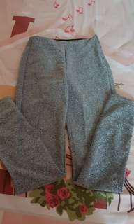 HNM Glittery skinny pants