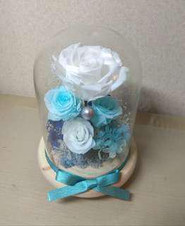 玫瑰保鮮花瓶(藍天與白雲充滿夏天色彩)