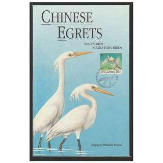 Singapore 1993 Chinese Egrets - Birds Series - Migratory Birds - Maxi Card CTO