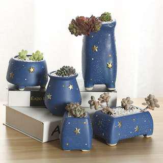 Cactus & Succulent Planter Pot: Blue Sky
