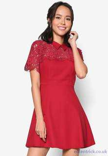 Lace Pieced Fit&Flare Dress