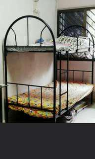 Double Decker Bed / Bunk Bed @ $33