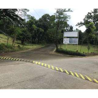 LOT FOR SALE IN KINGSVILLE ROYALE in SUNVALLEY ANTIPOLO