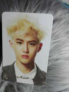 Suho Overdose Official Photocard