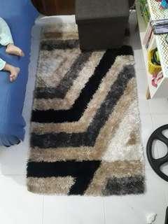 Carpet shaggy