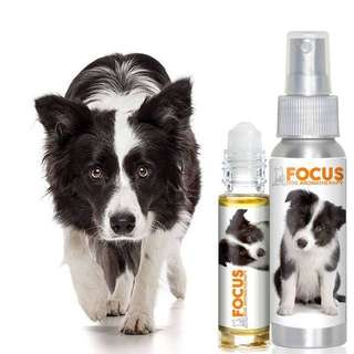 "The Blissful Dog ""Focus"" Aromatherapy Essential Oil"